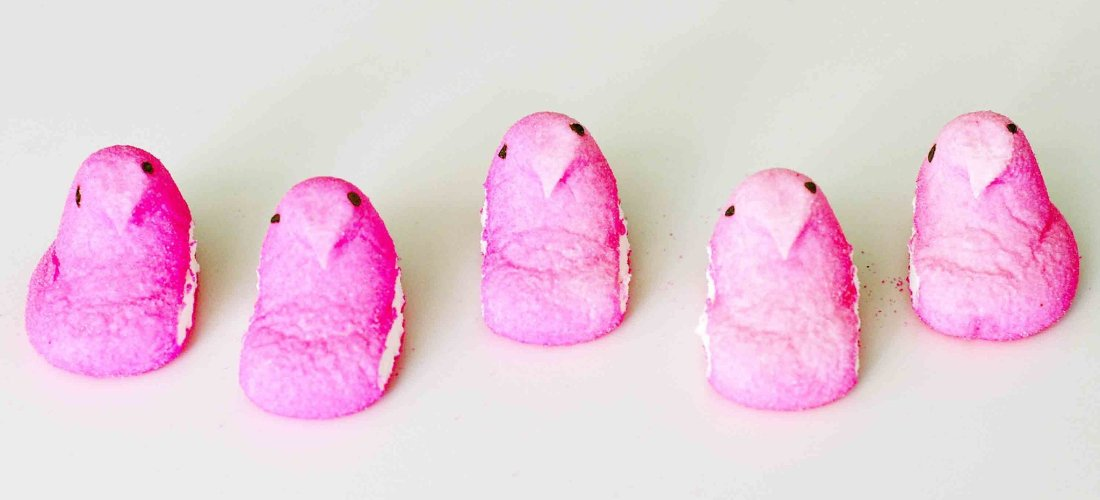 Pink chick peeps